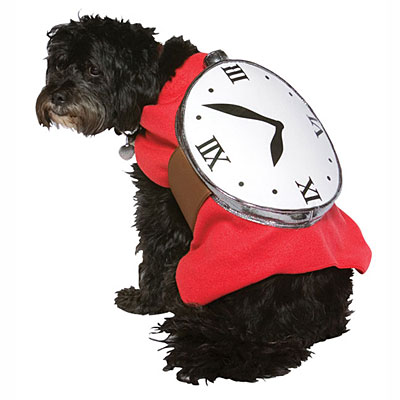 http://www.amillionwatches.com/wp-content/uploads/2012/05/watch-dog-halloween-outfit.jpg